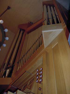 new_organ3