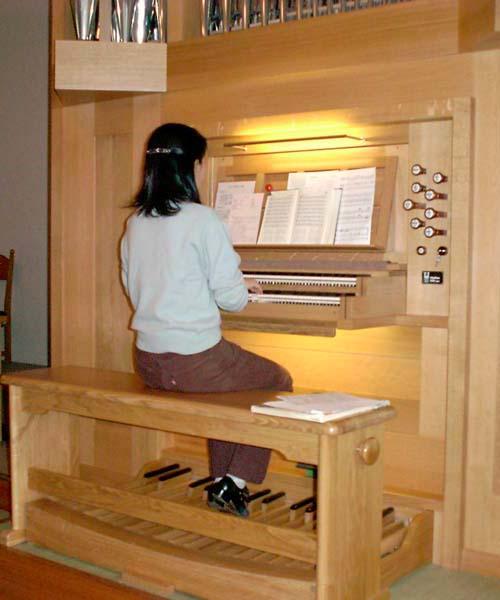 new_organ4